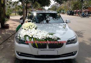Hoa xe cưới MS015