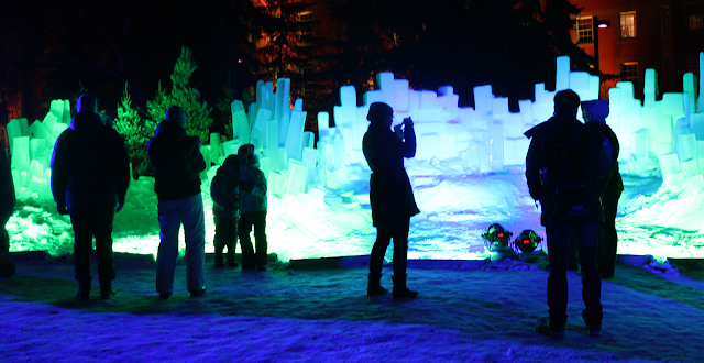 UAlberta Alumni Green and Glow Winter Fest 2015
