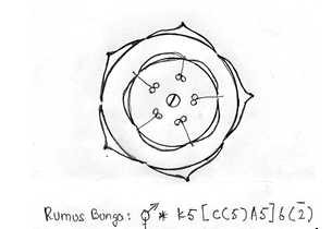 Ageratum conyzoides l rumput tahi ayam pustaka pandani diagram bunga ccuart Choice Image
