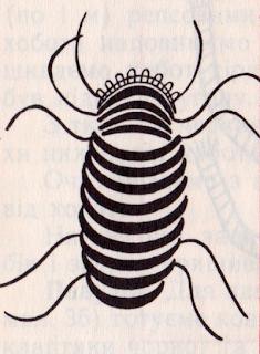 Техника и схема плетения жучка в макраме.