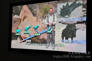 恐龍演化說明