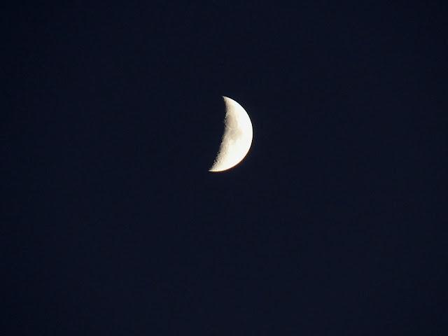 moon macro close up detailed