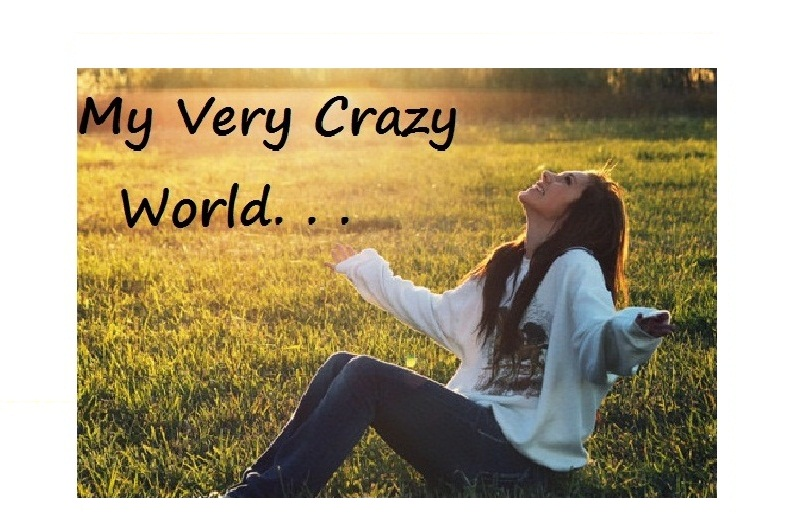 My very crazy world