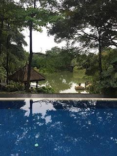 Pool & Pond in the clubhouse Gita Bayu Sale Rent