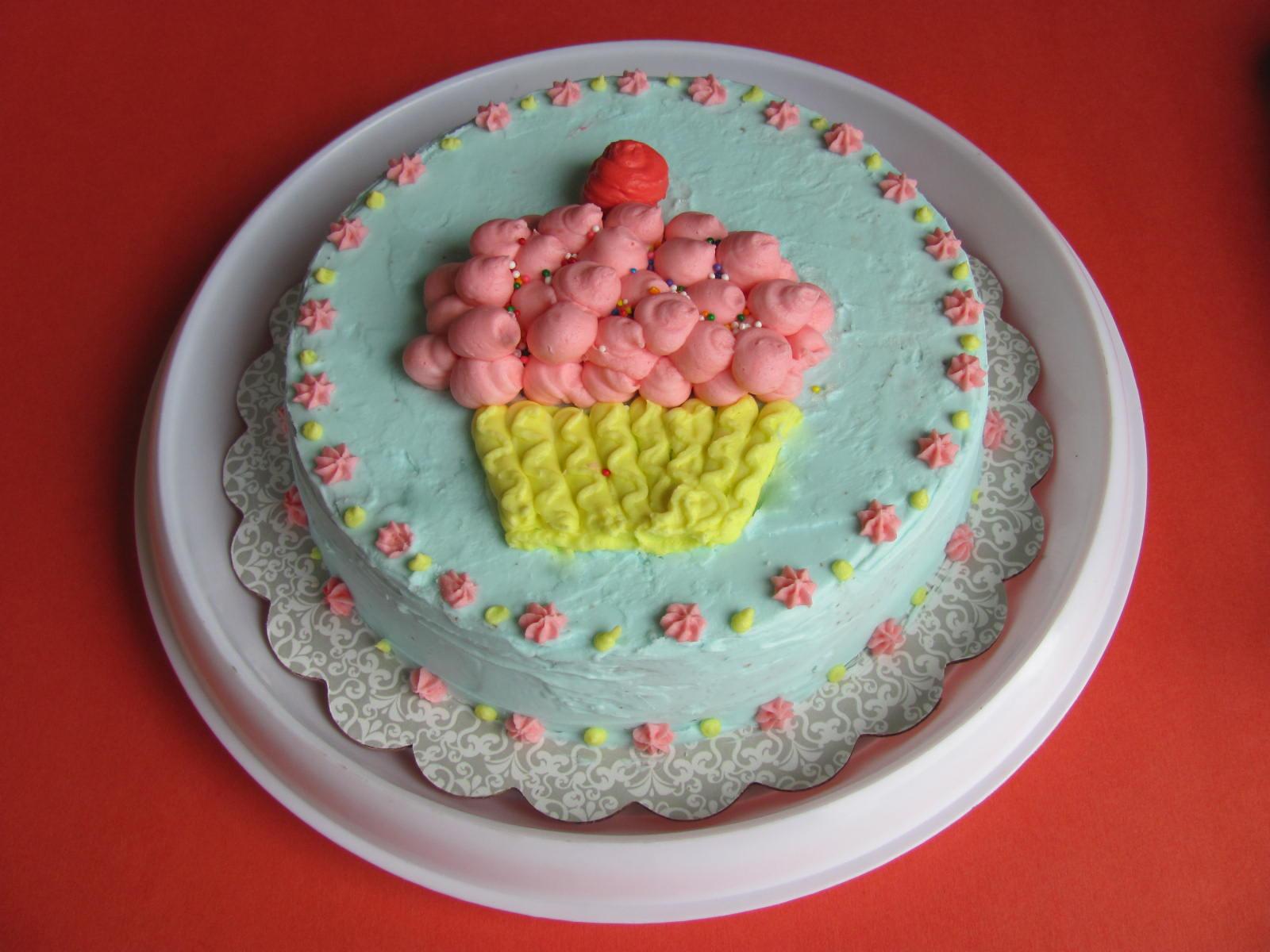 Wilton Cake Decorating Buttercream Recipe : Wilton Cake Decorating Classes - My Culinary Adventures