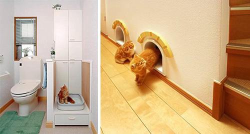 Unbelievable Cat friendly House Design From Japan Enter your blog