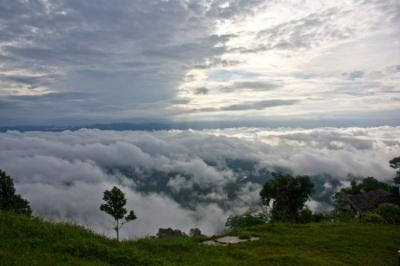 beautiful pics of NilGiri
