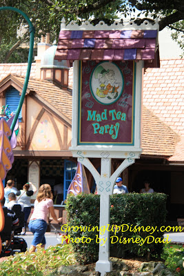 growing up disney world mad tea party ride
