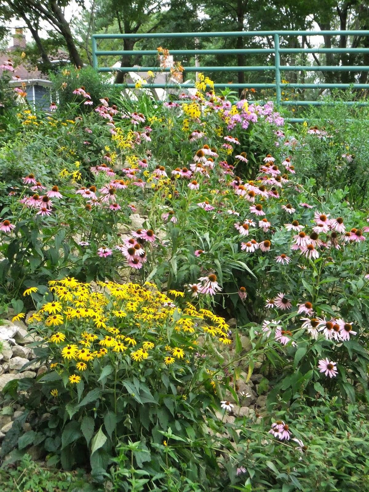 Prospect Gardens Summer Time