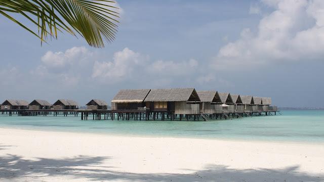 Island Nature Paradise