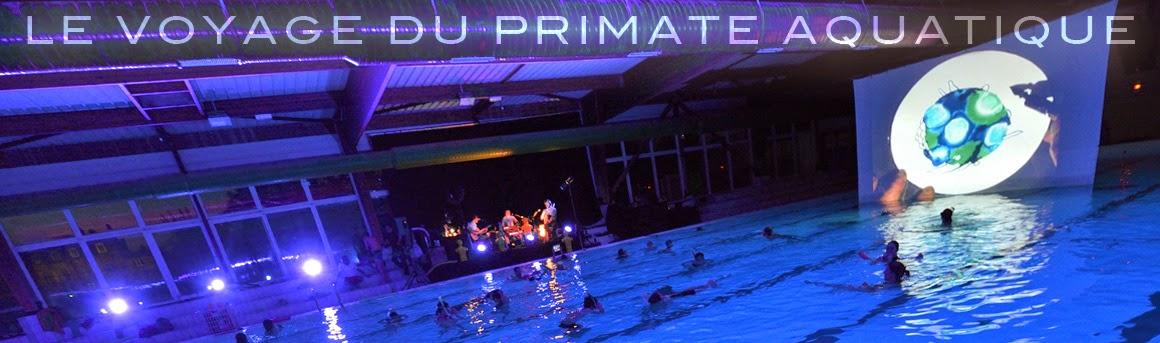 Le voyage du primate aquatique