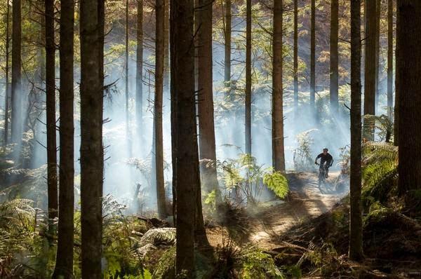 Bike Festival Rotorua, Rotorua