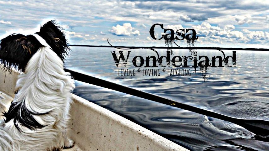 Casa Wonderland
