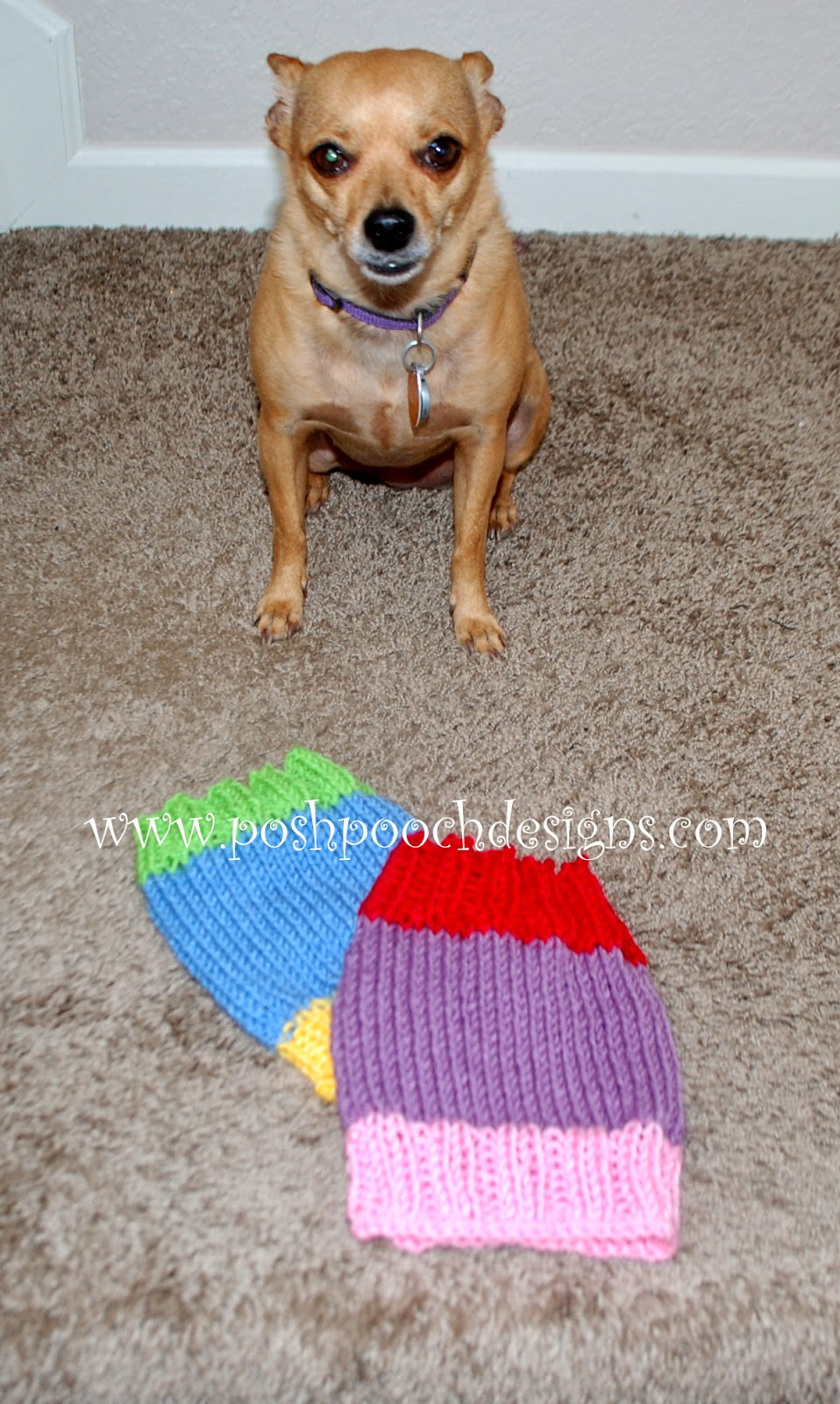 Posh pooch designs dog clothes colors dog snood free knitting i set the snoods down bankloansurffo Choice Image