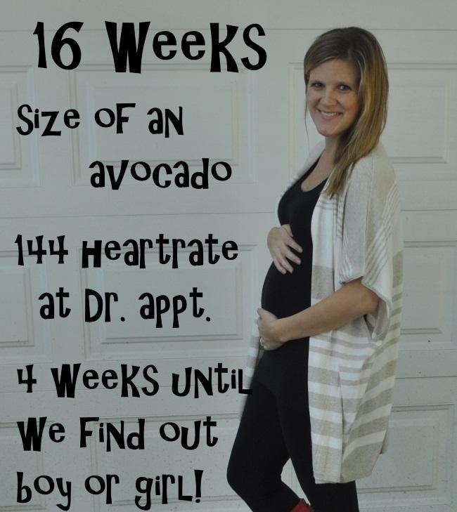 16 week baby bump