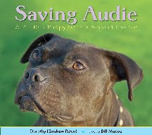 Saving Audie -- a Pit Bull Puppy Gets a Second Chance
