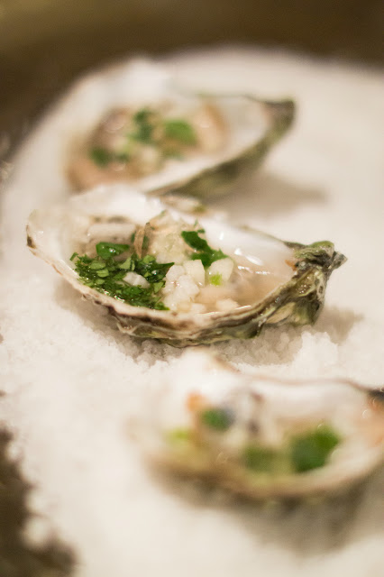 Duxbury oysters with champagne gelee, apple, jicama, and jalapeño