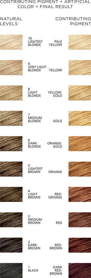 Hair color wheel chart wella