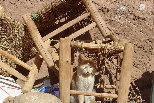 Aït-ben-Haddou photos