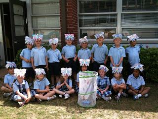 Montgomery Catholic Kindergarten Study Life Cycle and Release Butterflies 1