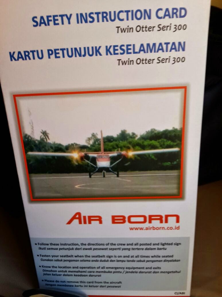 vivid argarini air born