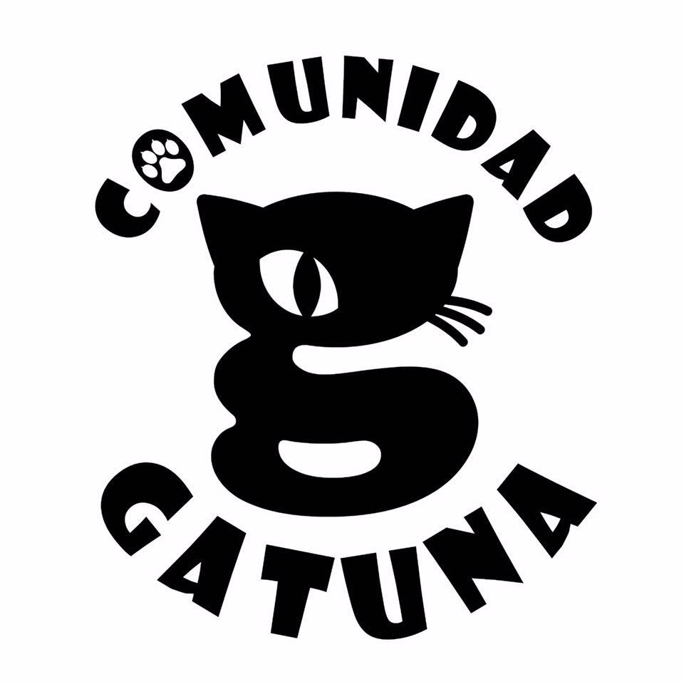 Adopta un gato de la Comunidad Gatuna de Ceuta