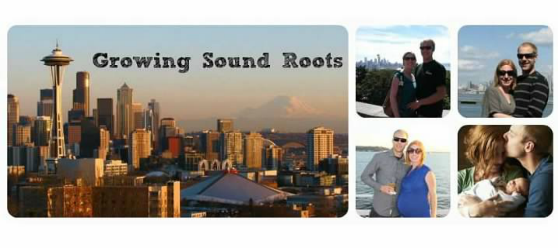 Growing Sound Roots