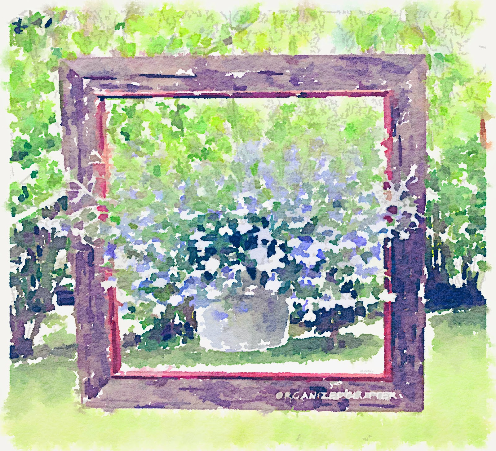 Waterlogue Framed Lobelia www.organizedclutterqueen.blogspot.com