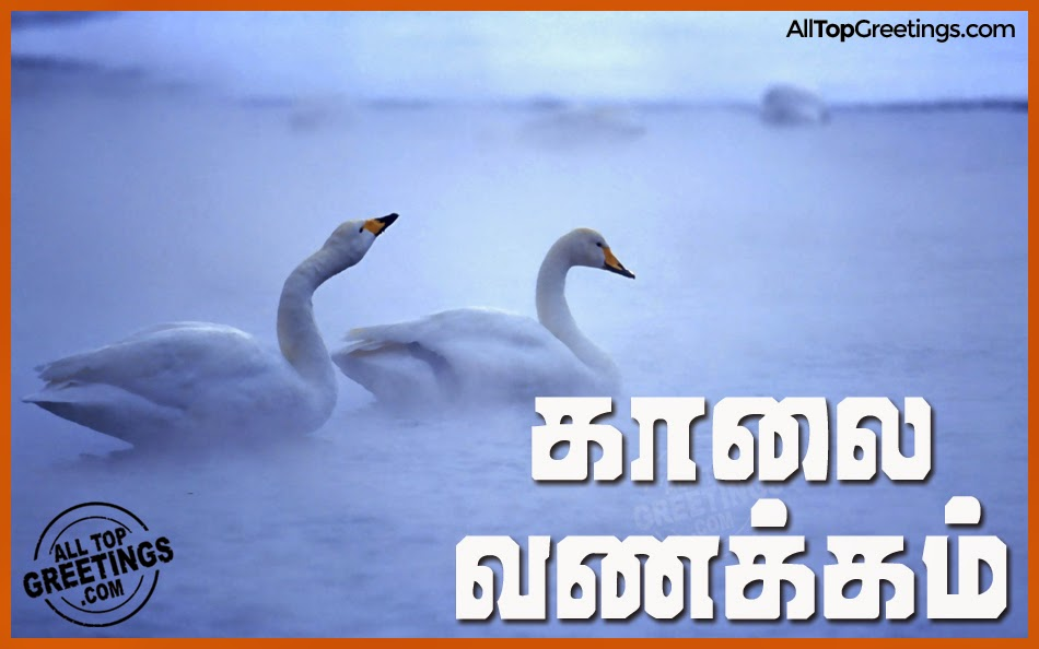 for facebook inspiring tamil good morning thoughts and messages latest ...