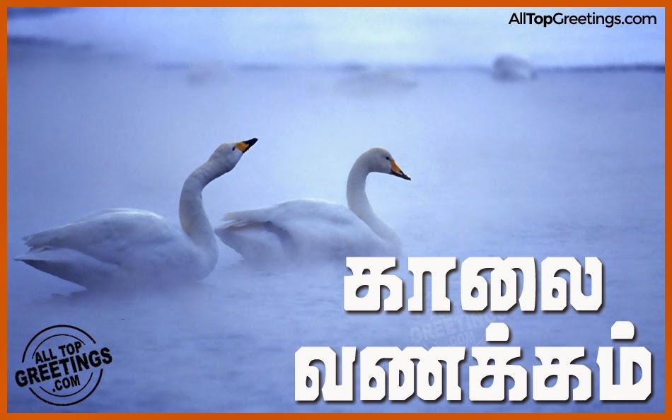 Best and beautiful tamil kaalai vanakkam images all top greetings
