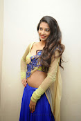 Dhaksha Hot photos at Ak Rao Pk Rao Audio launch-thumbnail-15