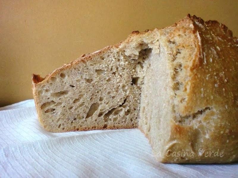 pane con casta madre_alveolatura