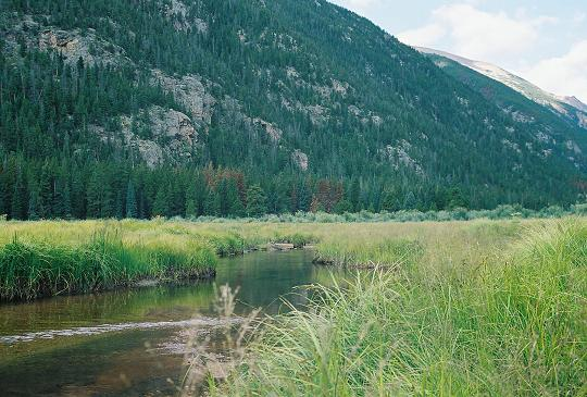 Fly Fishing With Brent Cannon Estes Park Colorado