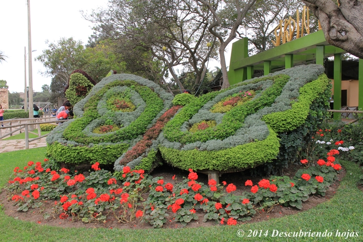 Descubriendo hojas jard n bot nico en el parque de las for Que es un jardin ornamental