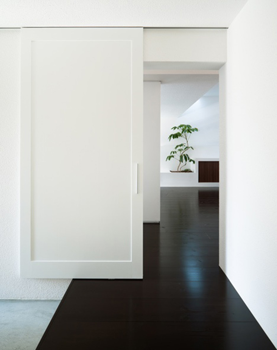white interior with black wooden floor