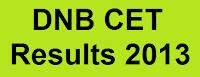 DNB CET Results 2013