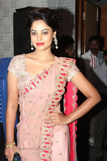 Actress Bindu Madhavi Saree Picture Stills 003.jpg