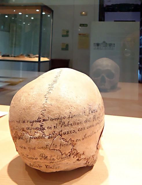 cráneo-preincaico