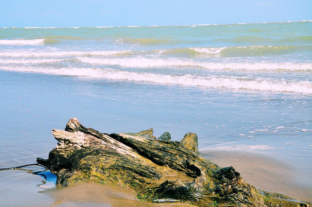 33 fotos de la playa y sus alrededores vacaciones 33 - Casitas de playa ...