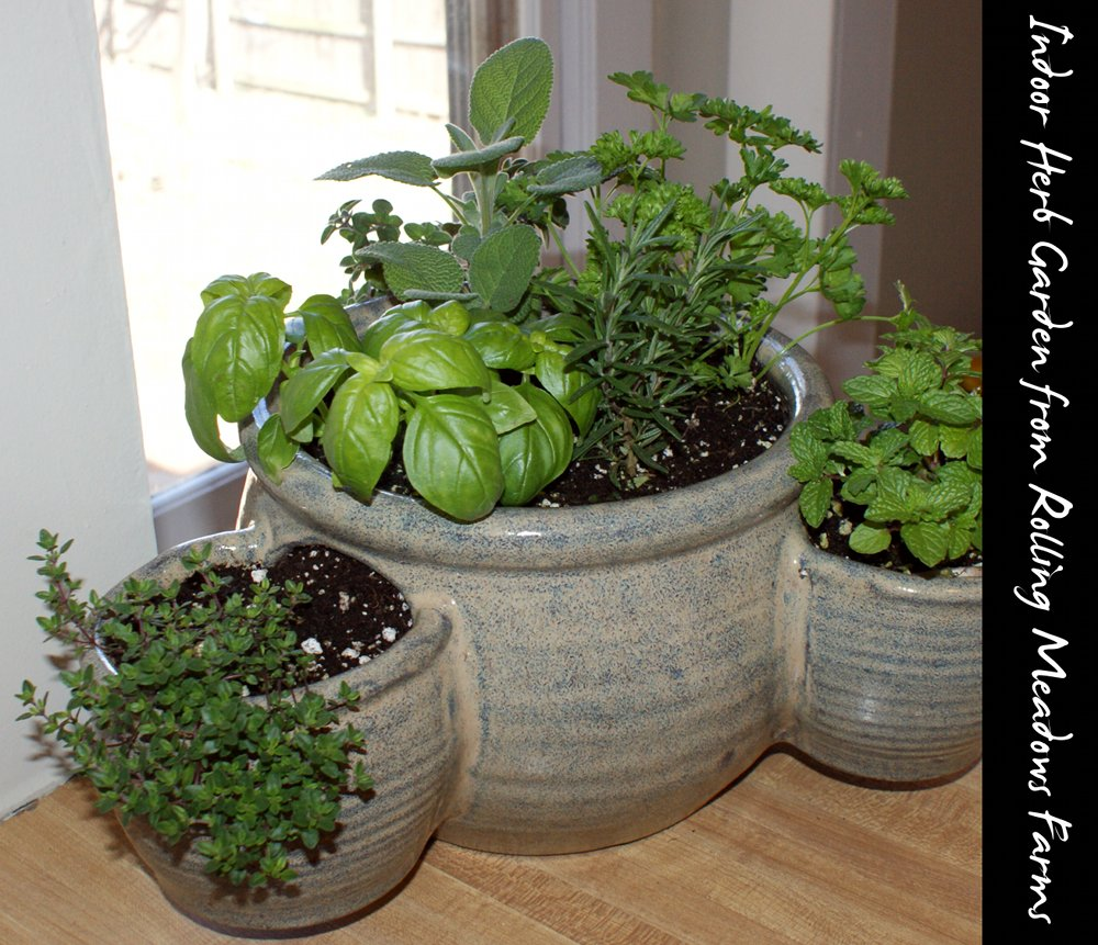 Indoor gardening archives soap deli news for Indoor gardening videos