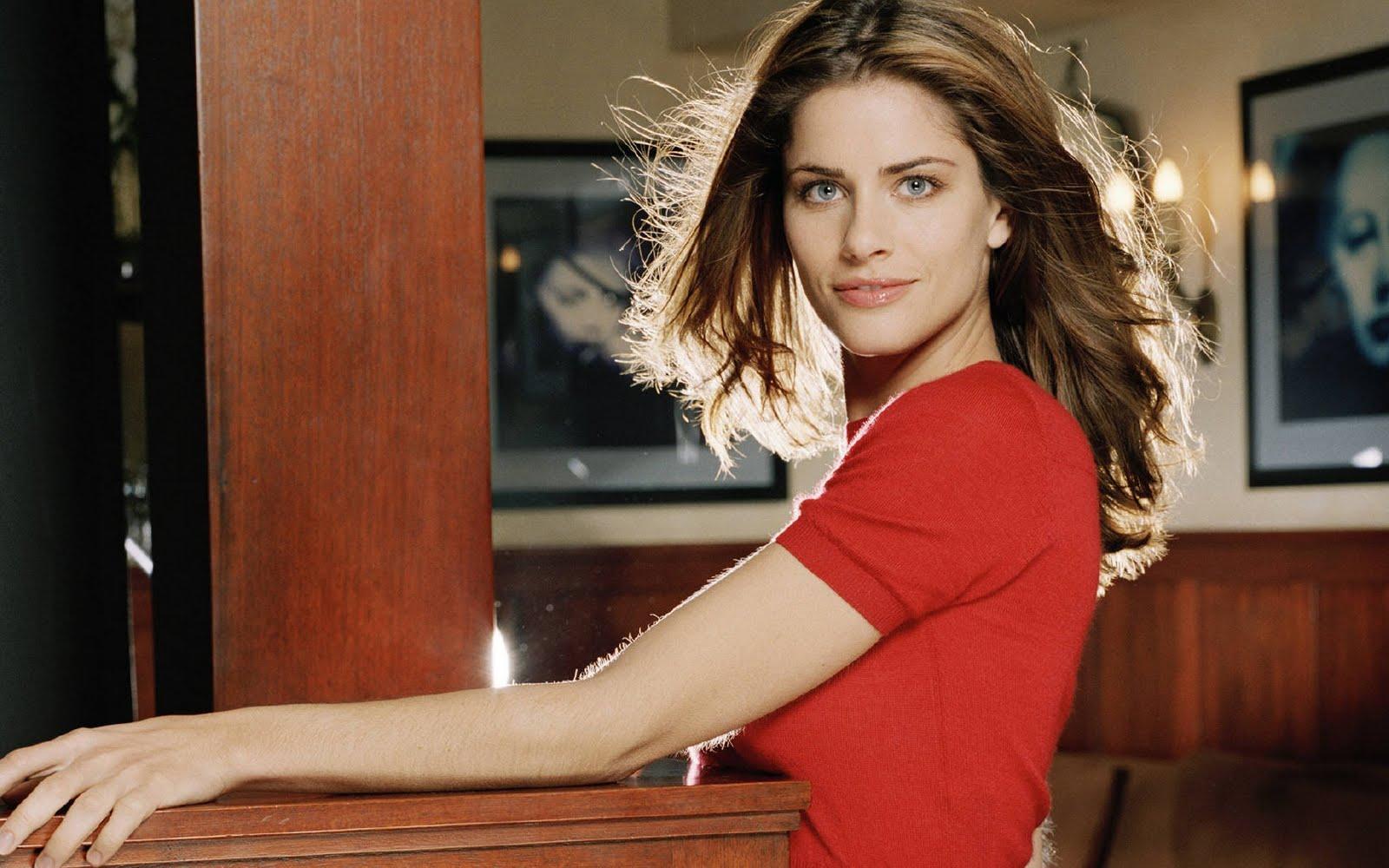 http://2.bp.blogspot.com/-h1Vg3UJTzt4/UHS9aeXQbNI/AAAAAAAAAn8/9dQxR5wVV8w/s1600/amanda-peet-red-shirt-wallpapers_16047_1680x1050.jpg