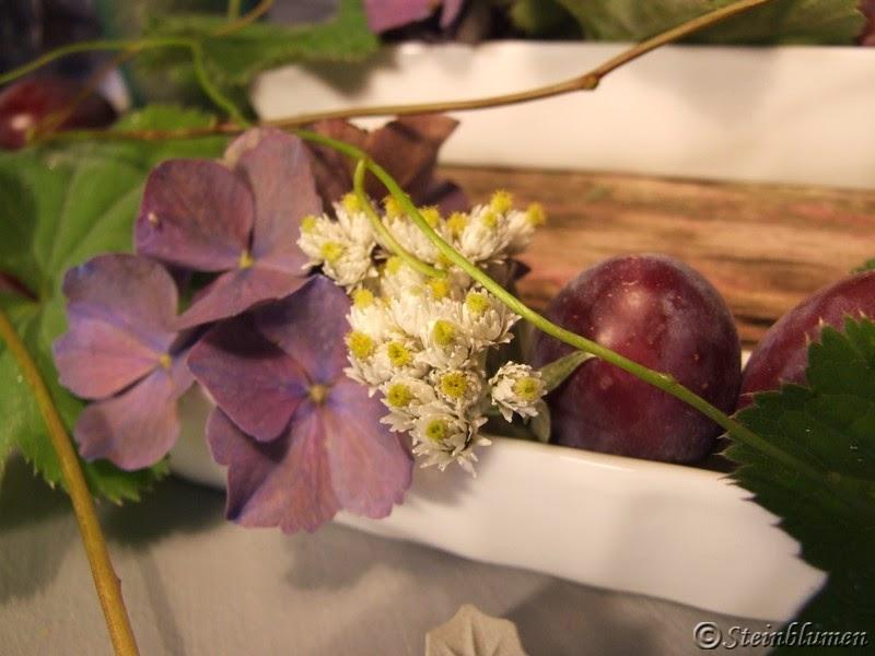 Tischdeko Hortensien und Pflaumen