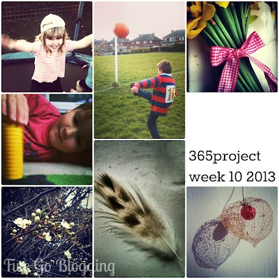 Fivegoblogging 365project week 10 2013