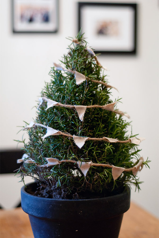 Small rosemary bush decorated with handmade bunting. Mini tabletop Christmas tree diy by Bayside Bride