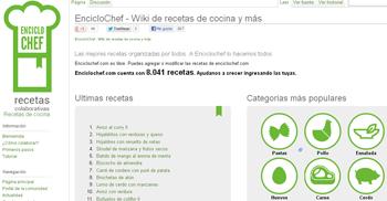 aprende a cocinar con Enciclochef - www.dominioblogger.com