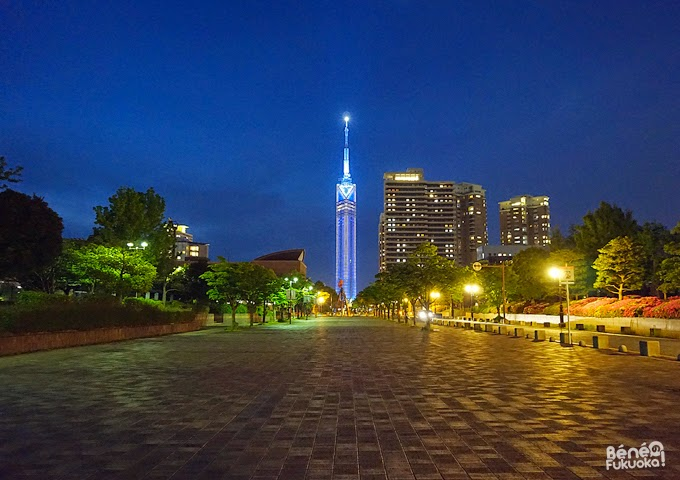 Fukuoka Tower by night