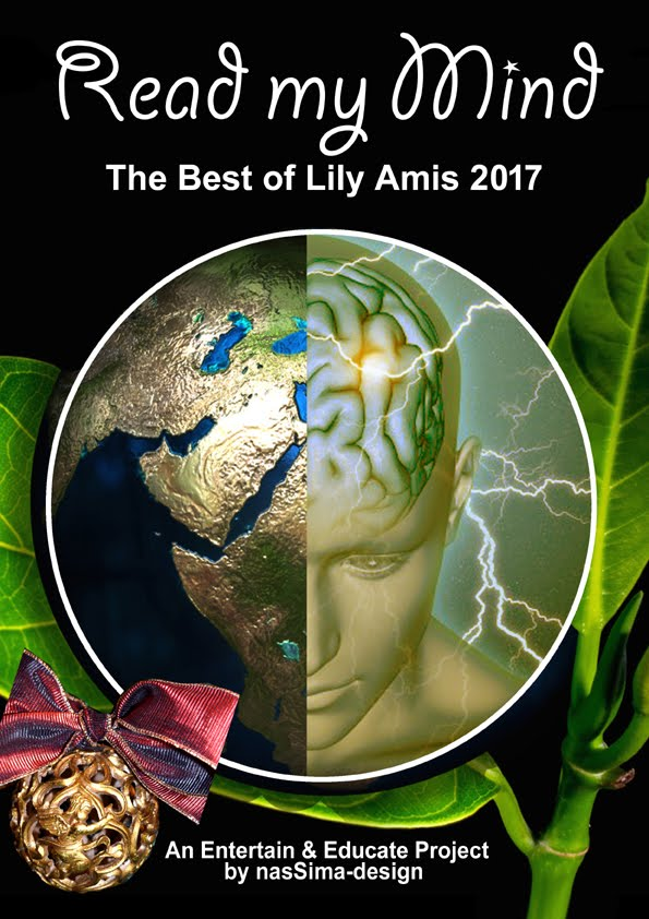 The best of Lily Amis Blog 2017