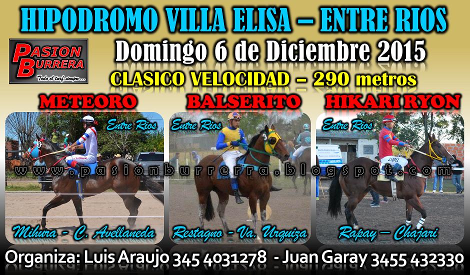 VILLA ELISA 6 - 290
