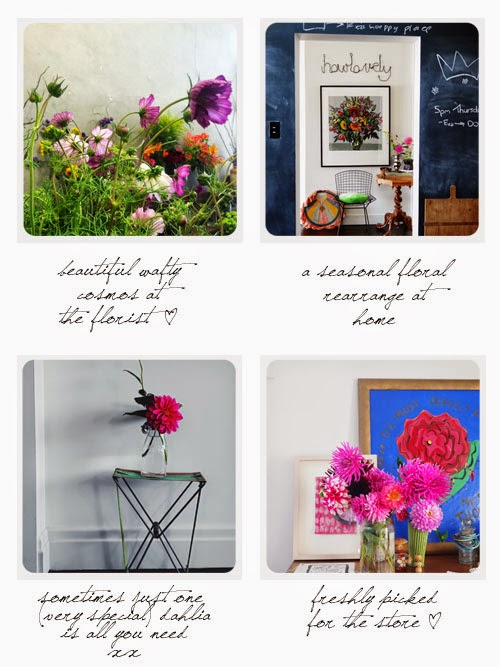 dahlias and flowers via small acorns blog