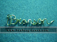 bronson_wire_name
